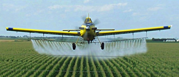 SPRAYING 01 - GLYPHOSATE 01.jpg